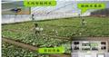 物联网农业智能控制系统