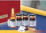 罗汉果苷IV