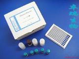 B19细小病毒抗体检测试剂盒