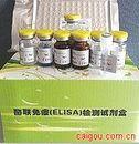 甲3型(H3N2)流感病毒 Elisa试剂盒