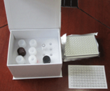 PON试剂盒,人对氧磷酶ELISA试剂盒价格