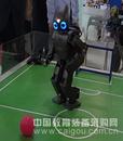 智能佳 达尔文娱乐表演机器人