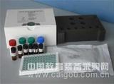 大鼠可溶性血小板内皮细胞粘附分子1(sPECAM-1/sCD31)ELISA试剂盒