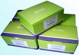 磁珠甲基化试剂盒