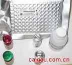 兔血管内皮生长分子(rabbit VEGF)ELISA kit