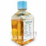 Gibco胎牛血清(16000-044) Gibco特级胎牛血清141(产地:澳洲血源 货号:10099-141)