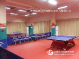 乒乓球館照明