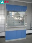 全鋼通風柜廠家直銷廣州實驗室家具制造商廣東澳美