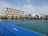 篮球场室外运动地胶 卷材水晶沙PVC运动地板耐磨防滑
