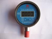隔膜型数字压力表