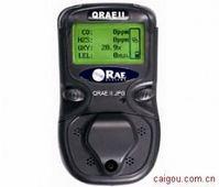便攜氣體檢測儀PGM-2400