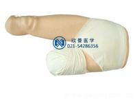 下肢包扎模型,高级低位包扎模型