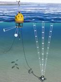 浮標和浮動平臺監測系統