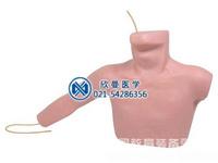 外周穿刺、中心静脉导管插入模型