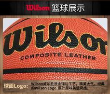 【威尔胜Wilson】威尔胜篮球吸湿PU室内外7号篮球WB600