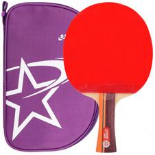 红双喜【DHS】R系列2星级乒乓球成品拍单拍兵乓球拍二星级R2002单只装