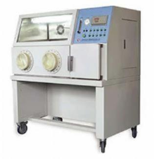 厌氧培养箱