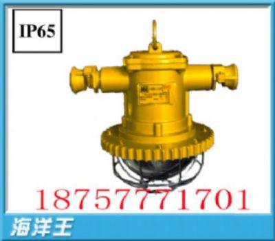 矿用LED巷道灯(圆形)24w矿用LED灯