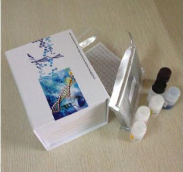 信号传导转录激活因子2(STAT2)检测试剂盒(酶联免疫吸附试验法)