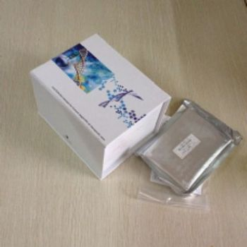 Smoothelin蛋白(SMTN)检测试剂盒(酶联免疫吸附试验法)