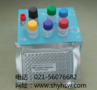 GATA-6 酶免试剂盒