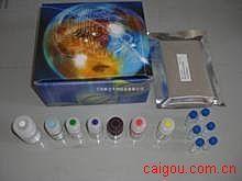 人庚型肝炎病毒IgG(HGV-IgG)ELISA试剂盒