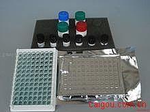 小鼠Elisa-凋亡诱导因子试剂盒,(AIF)试剂盒