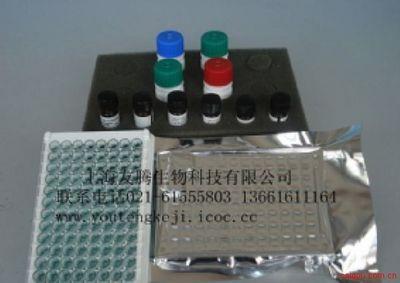 兔胱抑素C(Cys C) 酶免试剂盒