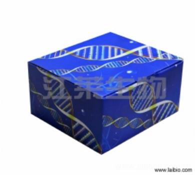 人乳酸脱氢酶(LDH)ELISA试剂盒说明书
