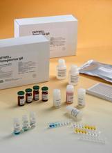 大鼠(PCNA)ELISA试剂盒,抗增殖细胞核抗原抗体ELISA检测试剂盒
