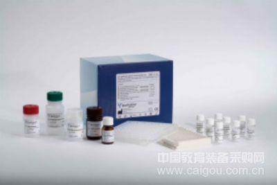 革兰氏阳性菌质粒中量提取试剂盒