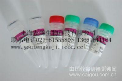 山羊淋巴细胞因子 ELISA试剂盒