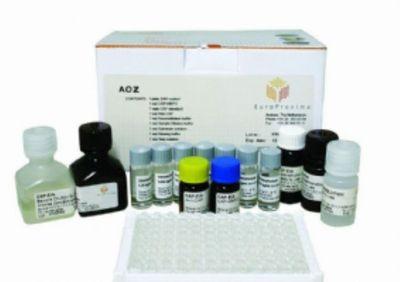 大鼠血管紧张素原(aGT)ELISA试剂盒