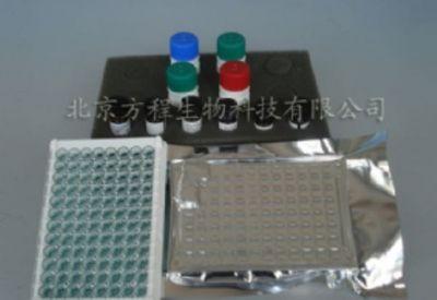人Cox V-IgG  ELISA检测试剂盒