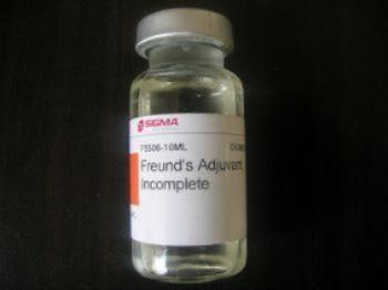 脱氧腺苷单磷酸
