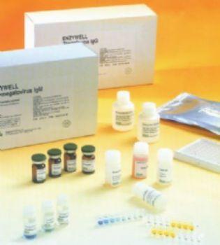 人血小板生成素(TPO)ELISA试剂盒  规格