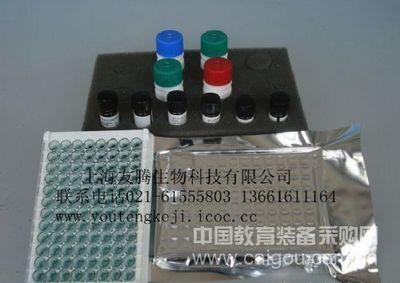 人抗着丝点抗体(ACA/CENP)ELISA Kit