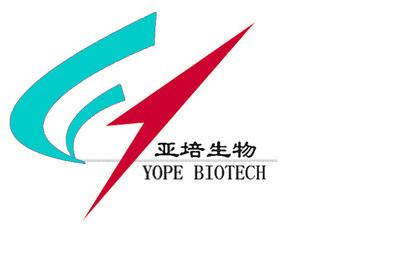 人巨细胞白血病细胞(B类)M-O7e