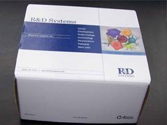 人胱抑素C(Cys C)ELISA试剂盒