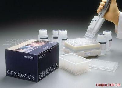人胶原酶I ELISA试剂盒