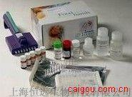 豚鼠白三烯D4 ELISA试剂盒
