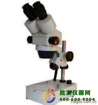 双目体视显微镜