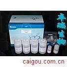 草酸钙/乙二酸钙/乙二酸钙盐/Calcium oxalate
