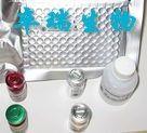 小鼠αL岩藻糖苷酶(AFU)Elisa试剂盒
