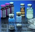 Galectin-2 酶免试剂盒