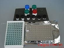 人Elisa-抗钙调素特异抗体试剂盒,(CAM-ab)试剂盒