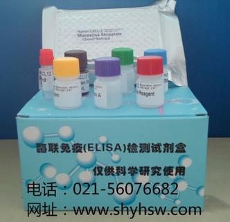 大鼠抗中性粒细胞核周抗体(pANCA)ELISA Kit