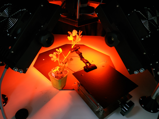 Fluorcam大型开放式叶绿素荧光成像系统 在河南农科院完成安装