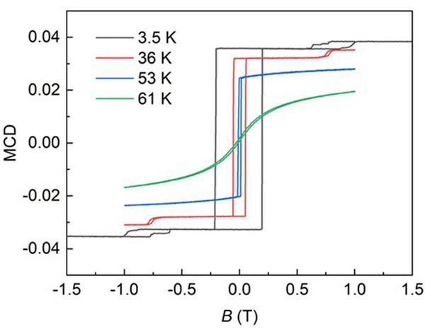 Nature前沿动态:低温强磁场共聚焦显微镜助力CrI3在新兴潜在领域中的应用