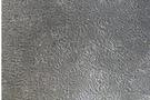 河南专业科研细胞实验外包原代细胞分离